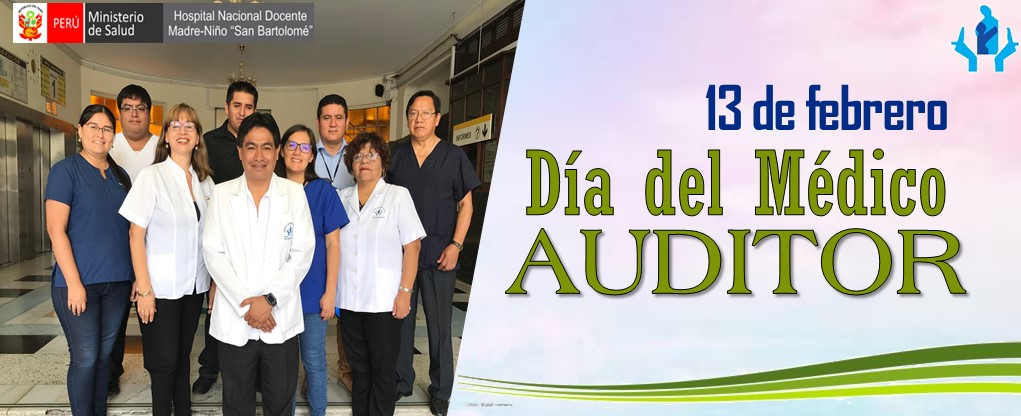 auditor2020